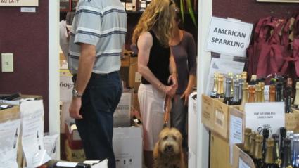 Dog Friendly Wine Shop