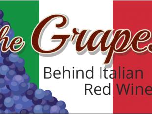 italian wine grapes