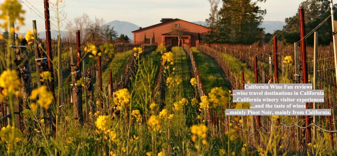 Pellegrini Winery And Vines