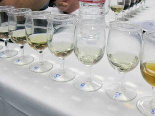 High Alcochol Wines Mea Culpa-2