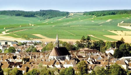 Domaine William Fevre Vineyards And Village Chablis at Artisan