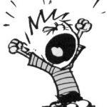 Calvin tantrum